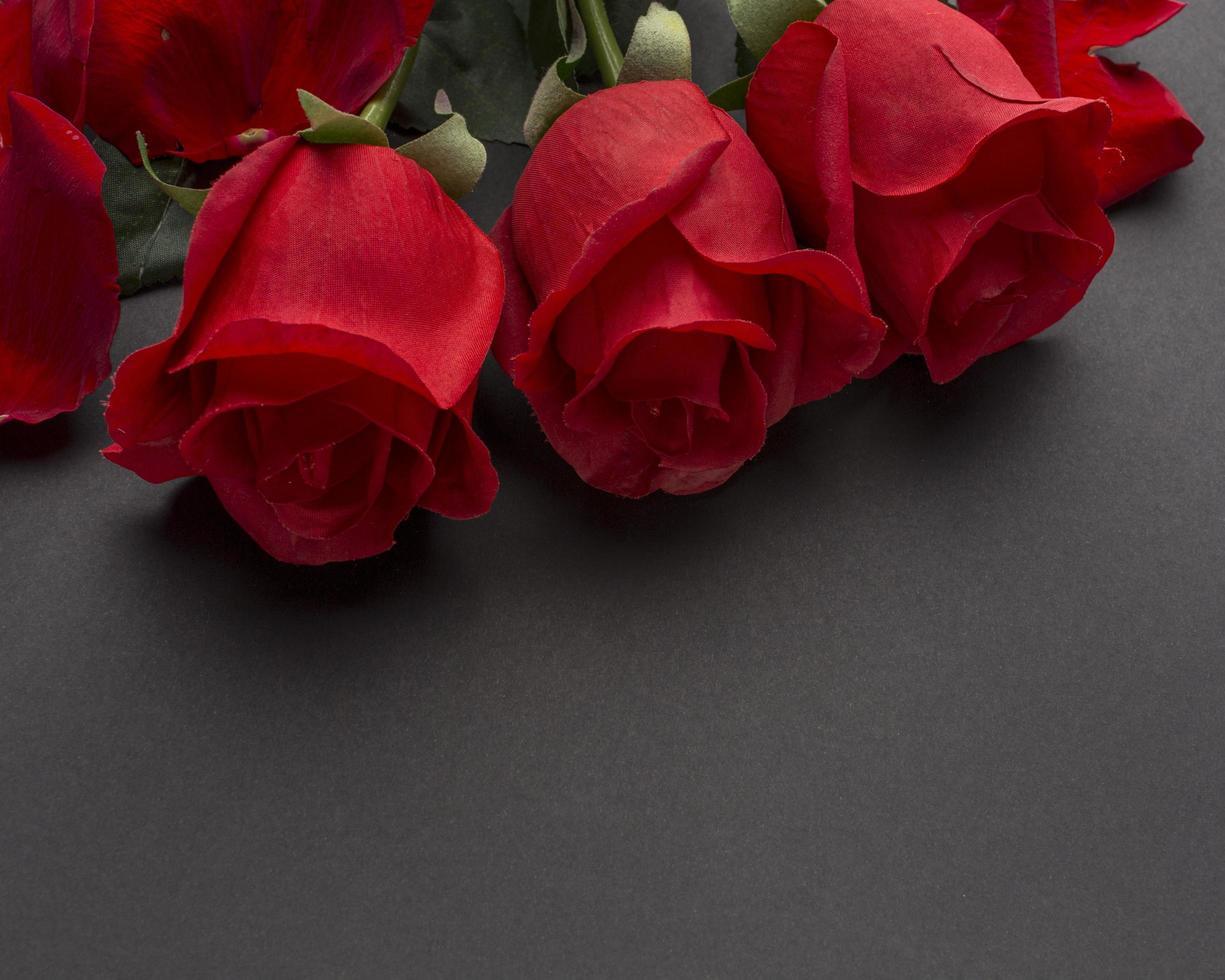 Nahaufnahme von roten Rosen foto