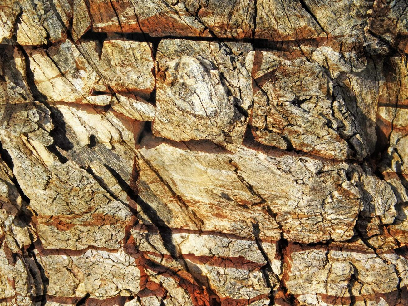Detail der Außensteinmauer für Hintergrund oder Textur foto