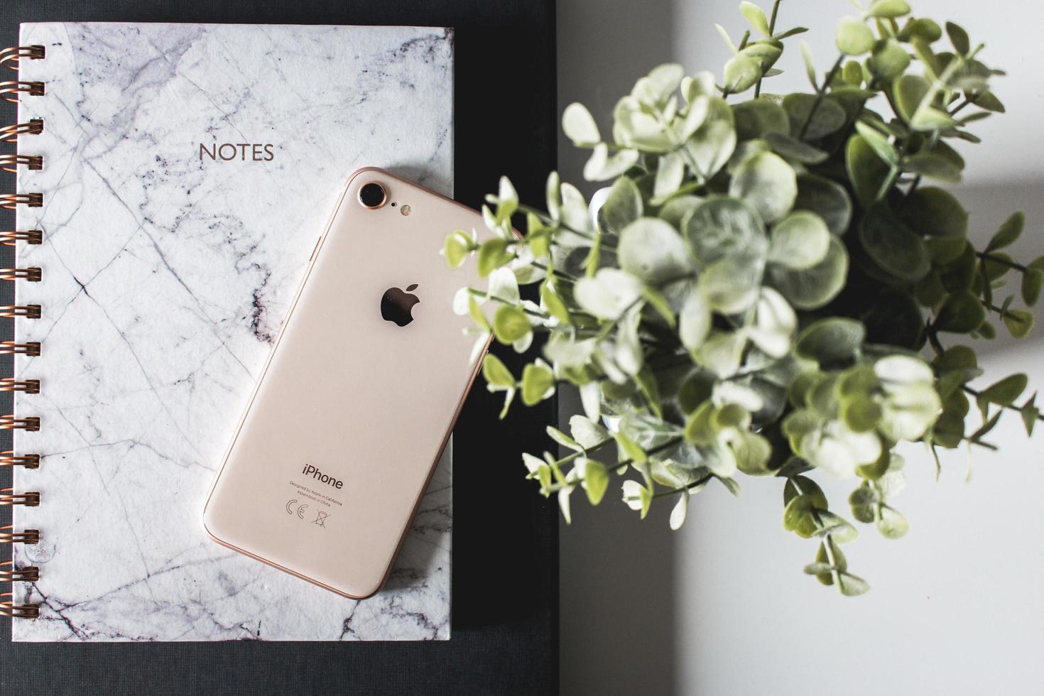 2019-- illustratives Editorial von Gold iPhone 8 auf Notebook neben grüner Pflanze foto
