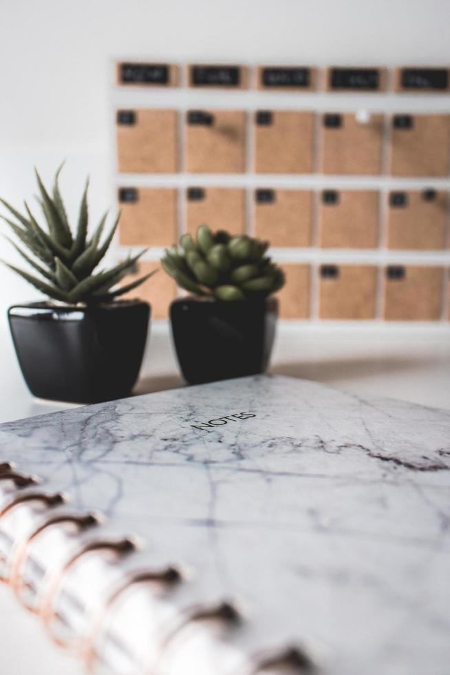 Notizbuch mit zwei Pflanzen foto