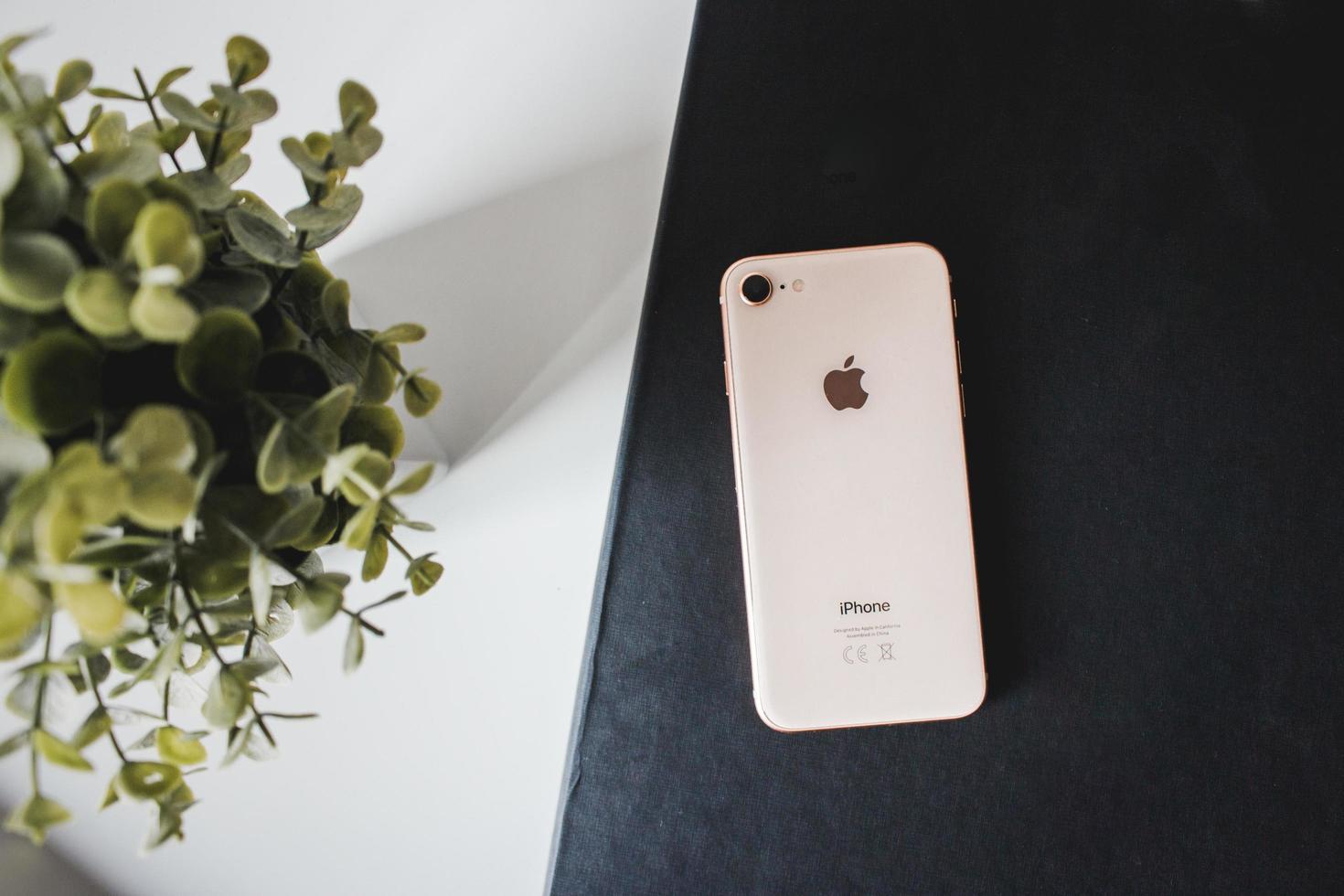 2018-- illustrativer Leitartikel von Roségold iPhone 8 auf einem schwarzen Hintergrund neben grüner Pflanze foto