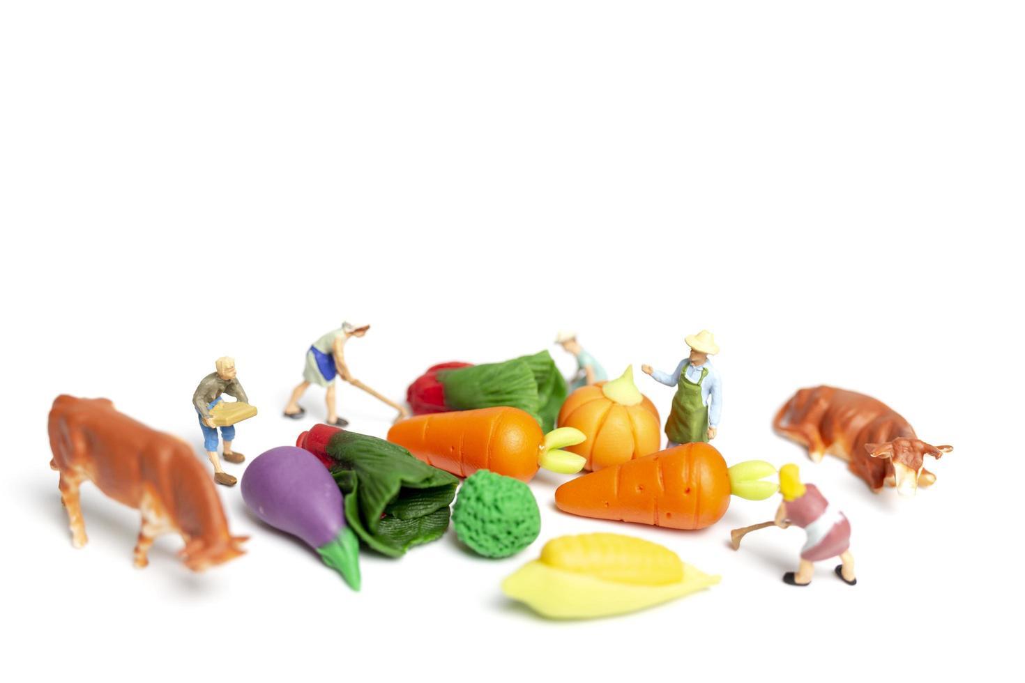 Miniaturgärtner, die Gemüse auf einem weißen Hintergrund, Landwirtschaftskonzept ernten foto