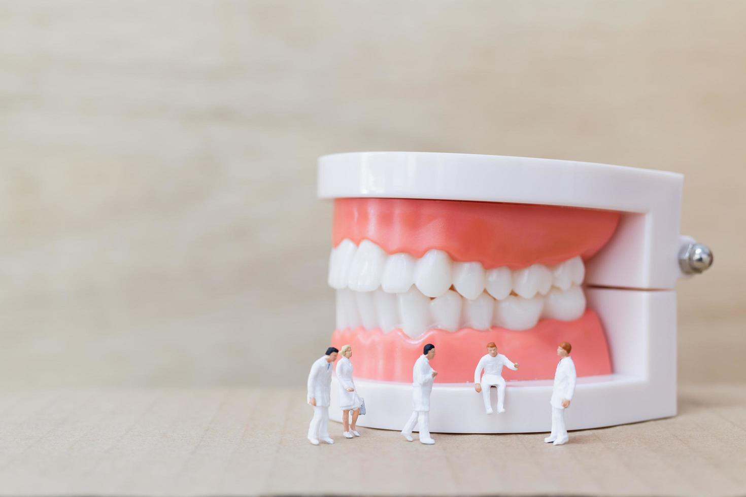 Miniaturzahnärzte und Krankenschwestern beobachten und diskutieren über menschliche Zähne mit Zahnfleisch und Schmelzmodell auf einem hölzernen Hintergrund foto