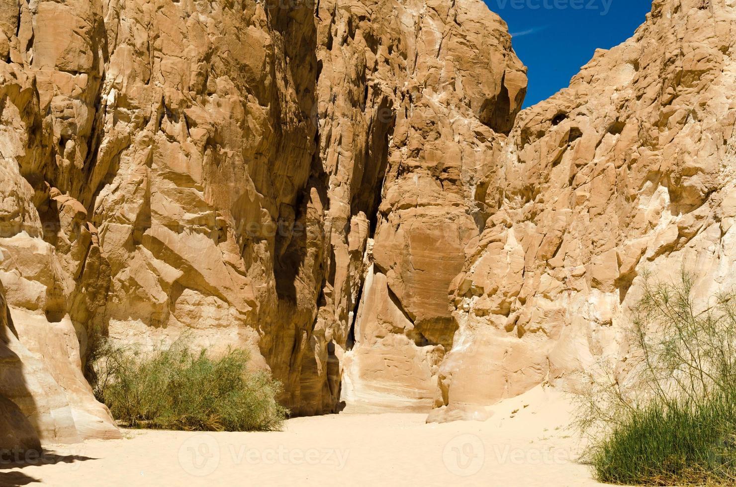Wüstenschlucht mit hohen Steinklippen foto