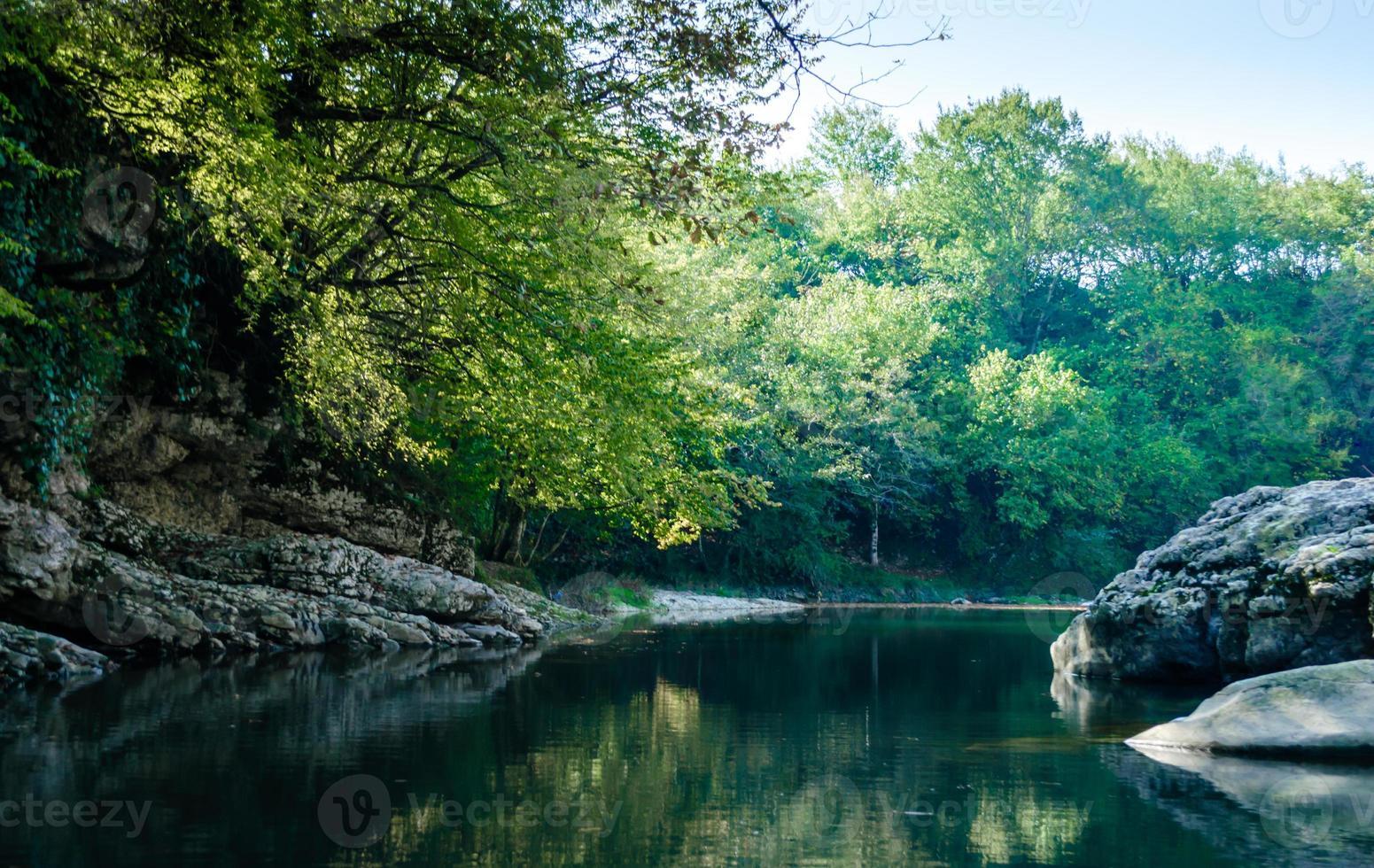 felsiges Ufer in einem Wald foto