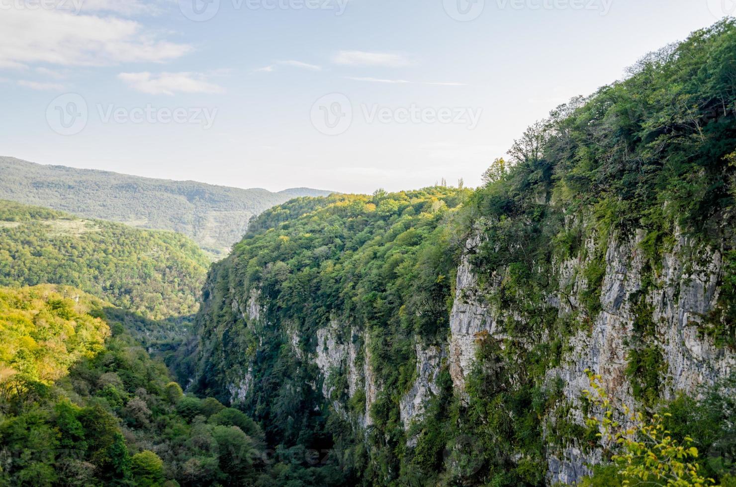 Berge mit grünen Bäumen foto