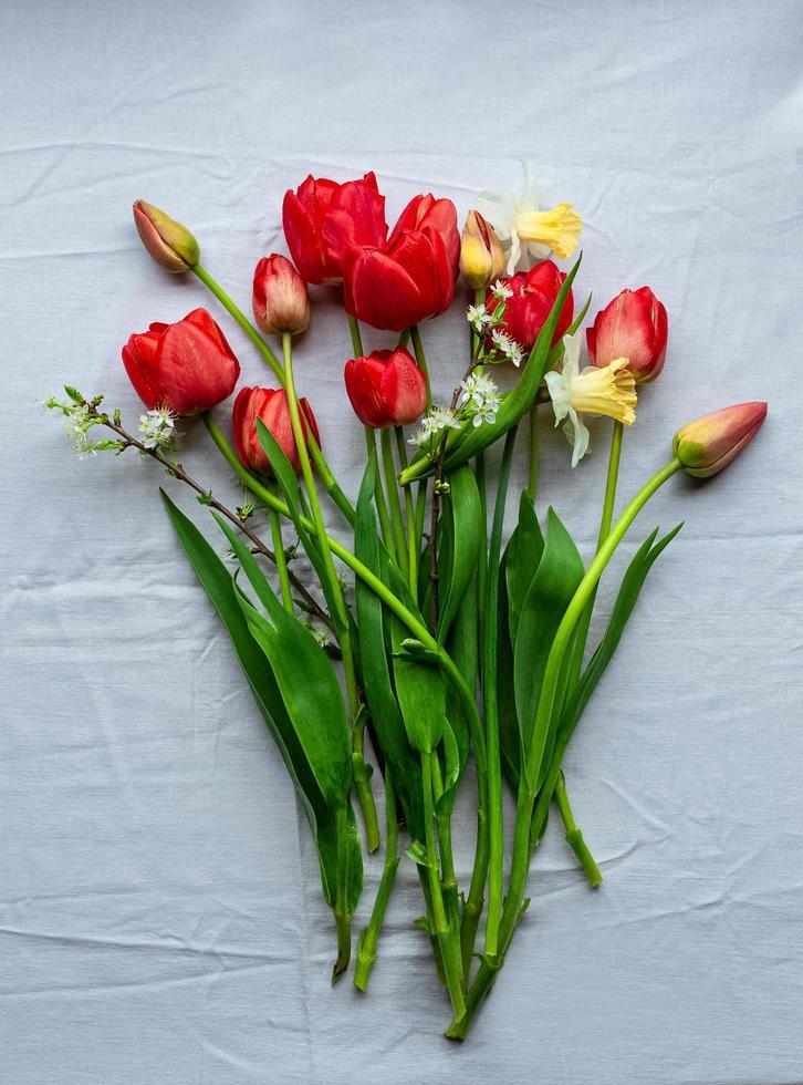 flach mit frisch geschnittenen Gartentulpen und Narzissen auf weißer Tischdecke liegen foto