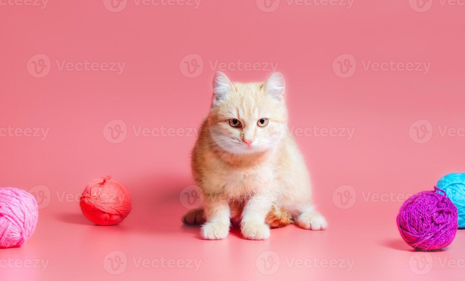orange Katze mit Garn foto