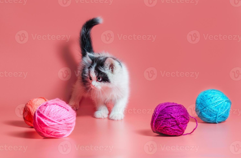 Schwarzweiss-Katze mit Garn foto