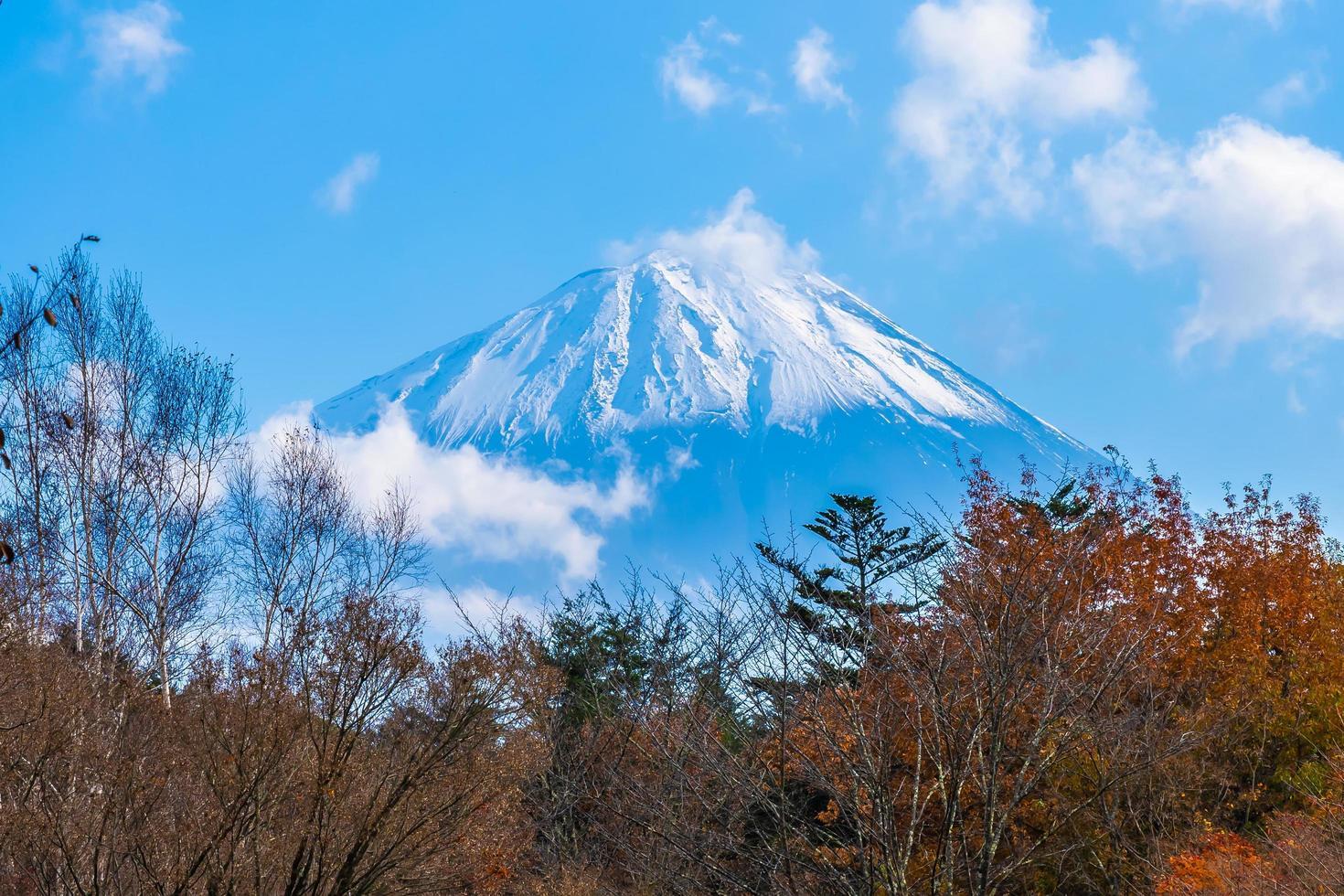 schöne landschaft bei mt. Fuji, Japan foto