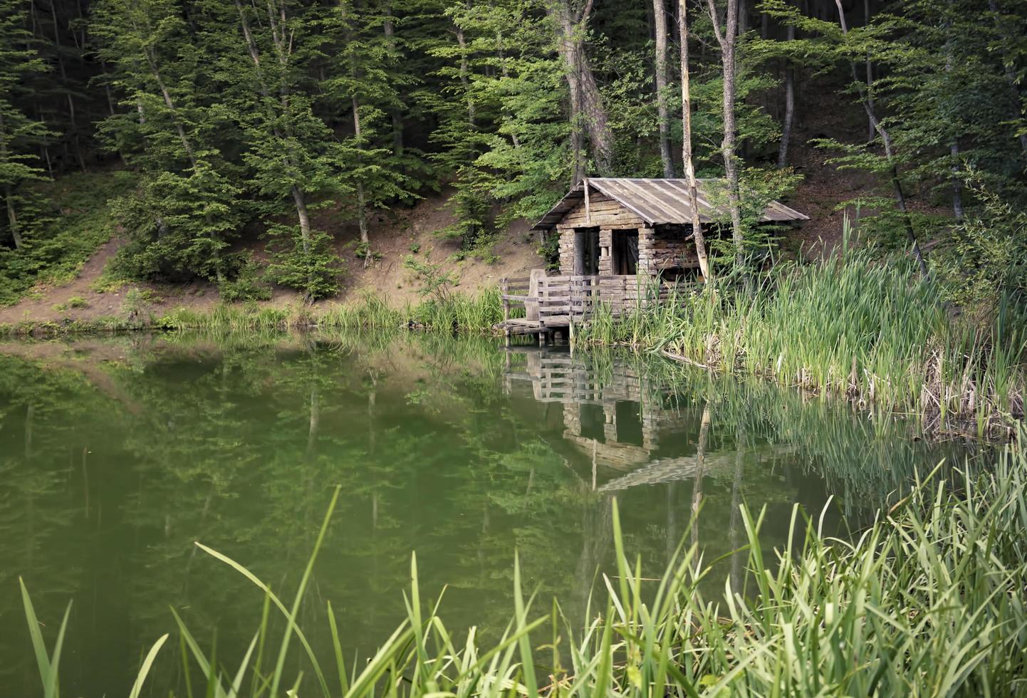 eine Hütte an einem See, umgeben von Bäumen in Jalta, Krim foto