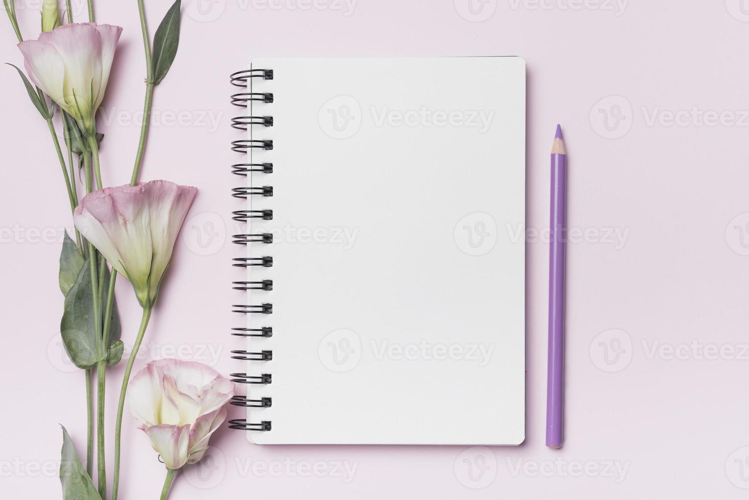 Eustoma Blumen mit leerem Spiralblock mit lila Bleistift gegen rosa Hintergrund foto