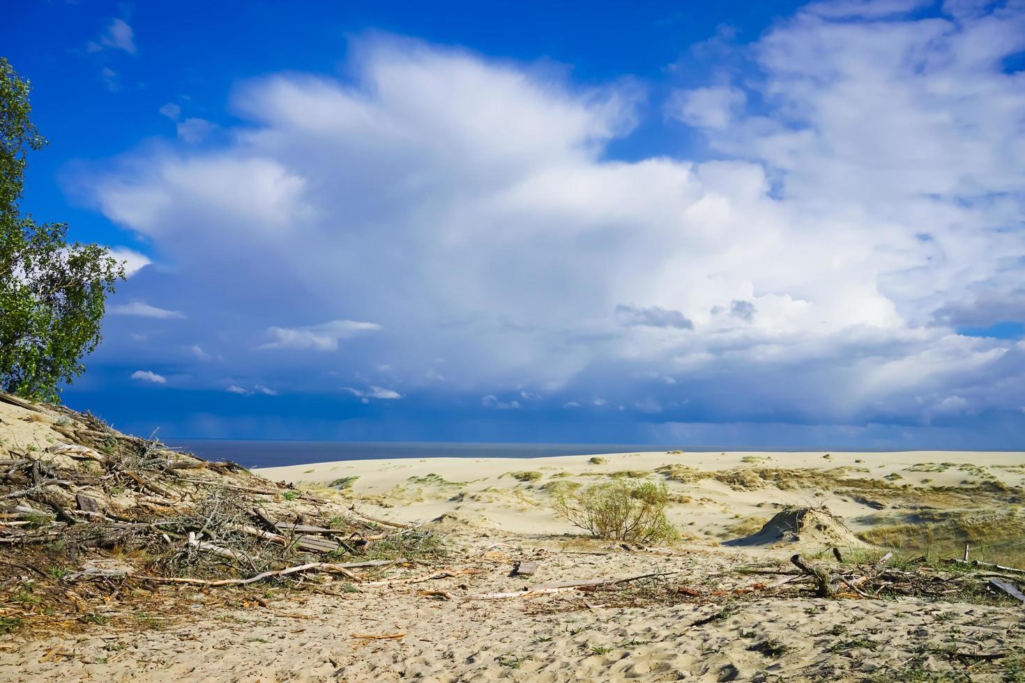 Seelandschaft der Ostsee mit Küstensanddünen der kuronischen Nehrung. foto