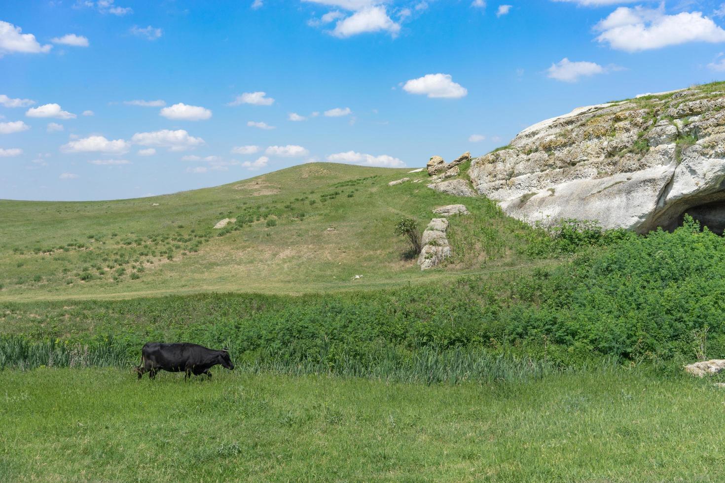 die natürliche Landschaft mit Blick auf die weißen Klippen und Höhlen. foto