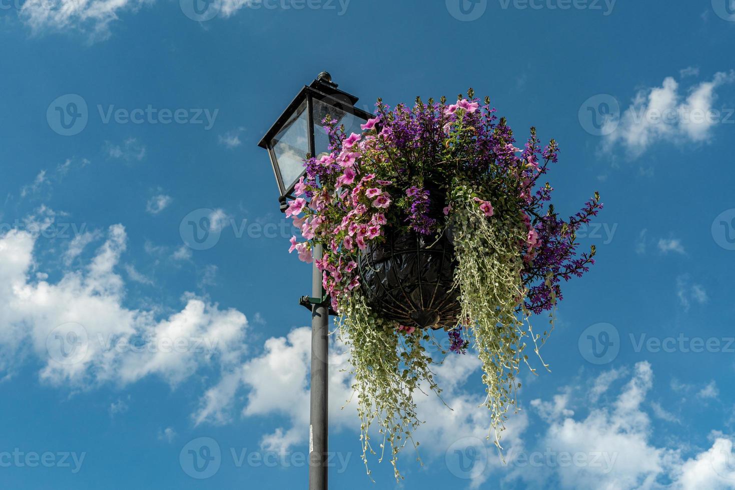 schöne Blumenanordnung, die von einem Laternenpfahl hängt foto