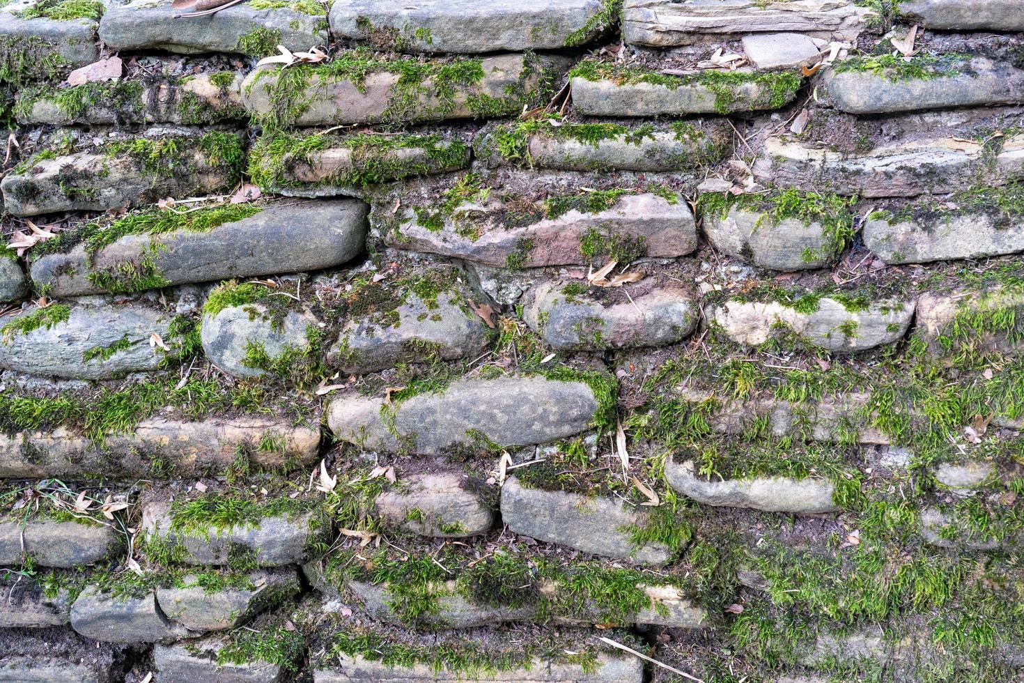 natürlicher Hintergrund von Steinen und Moos foto