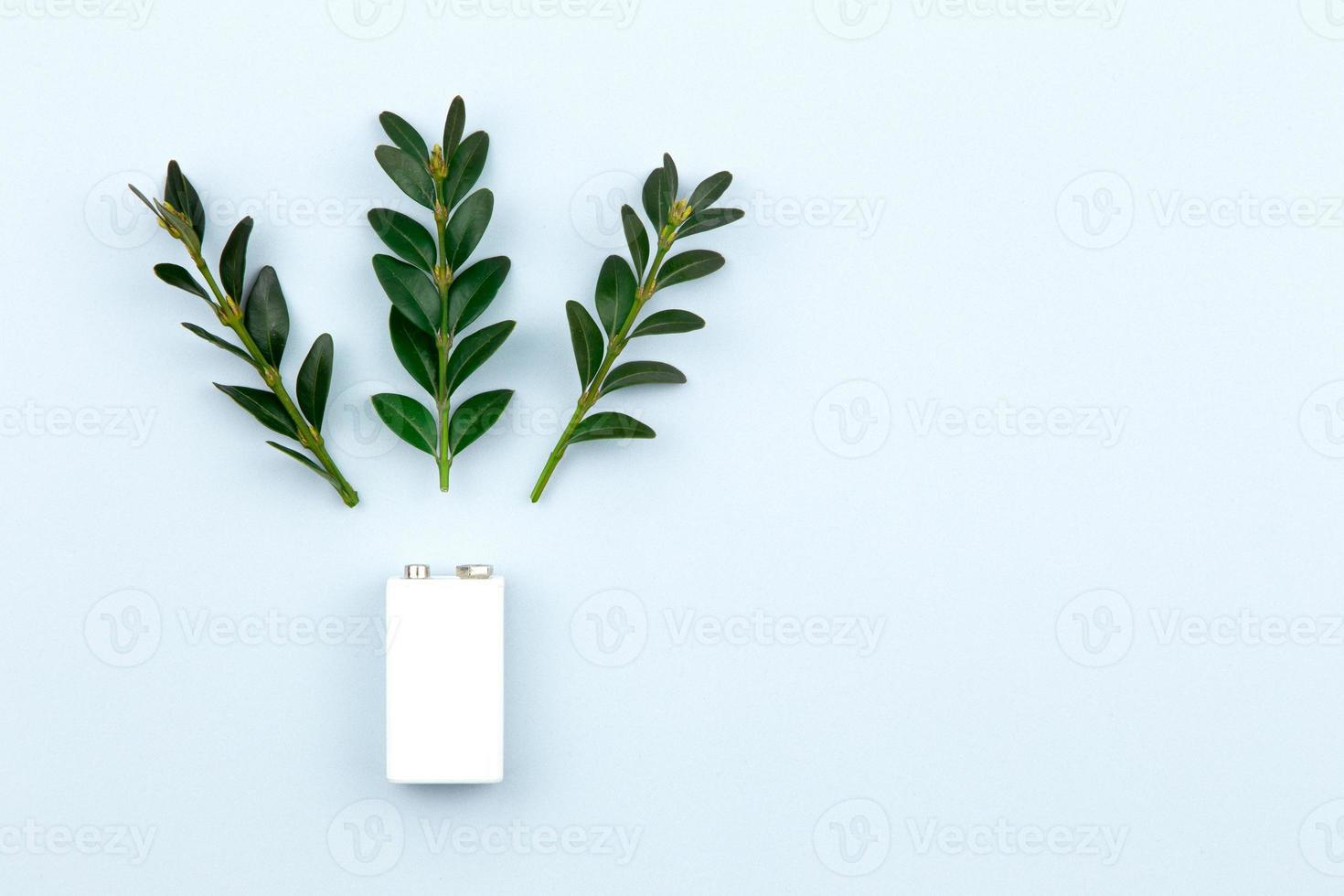 Öko-Energie- oder Ökostromillustration mit einer weißen Batterie und Zweigen verlässt auf einem hellen Hintergrund foto
