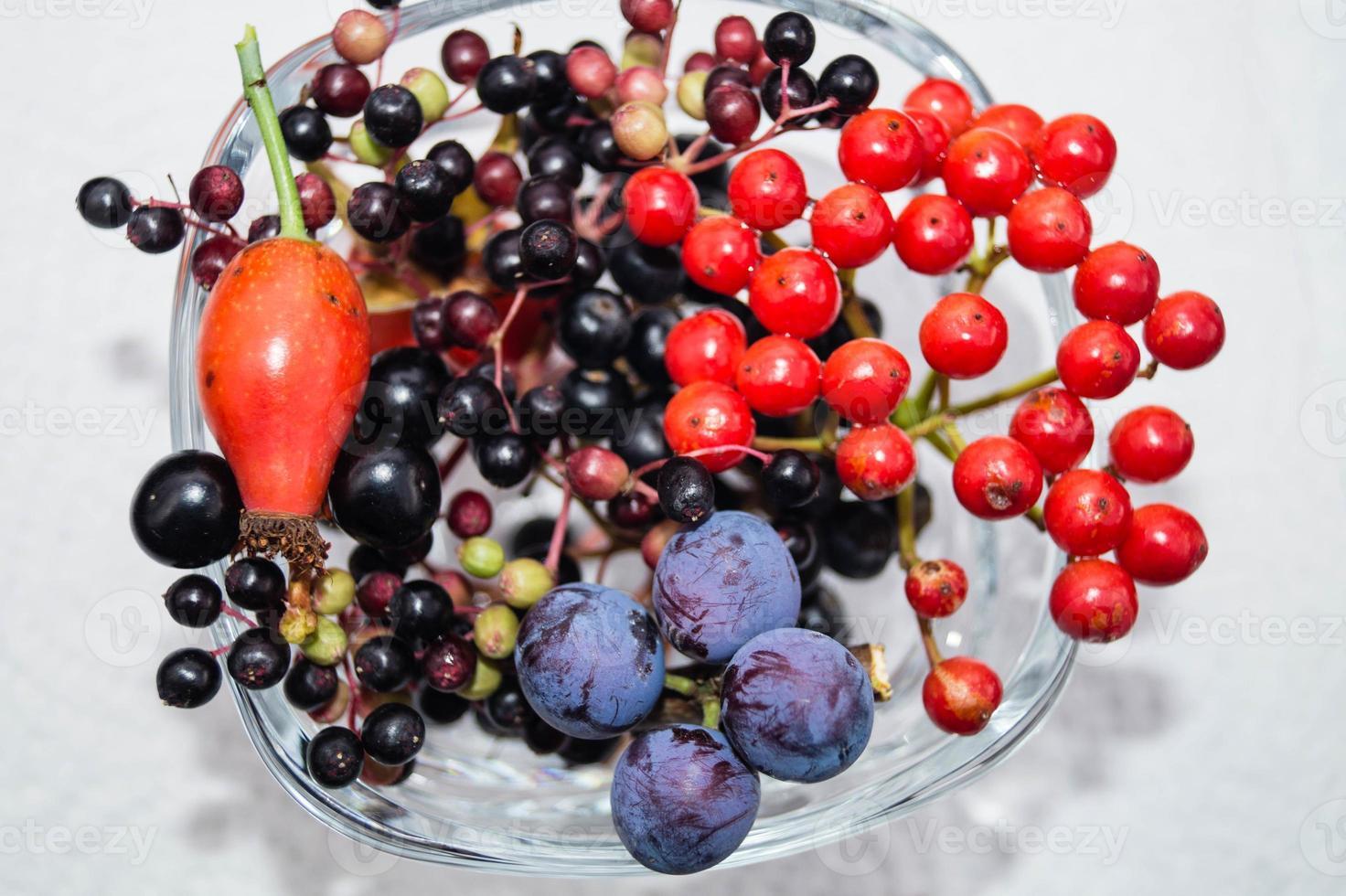 Alternativmedizin mit pharmazeutischen Kräutern Früchten und Beeren foto