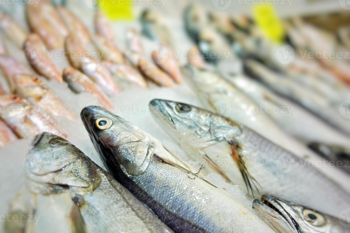 Fischfutter in einem Fischmarktstand foto