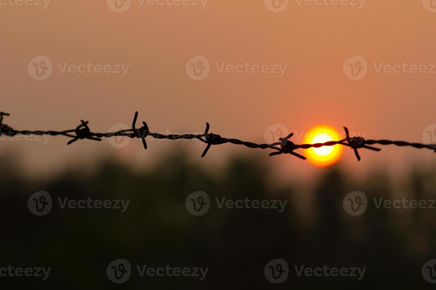 Stacheldraht-Silhouette am Sonnenuntergangshimmel foto