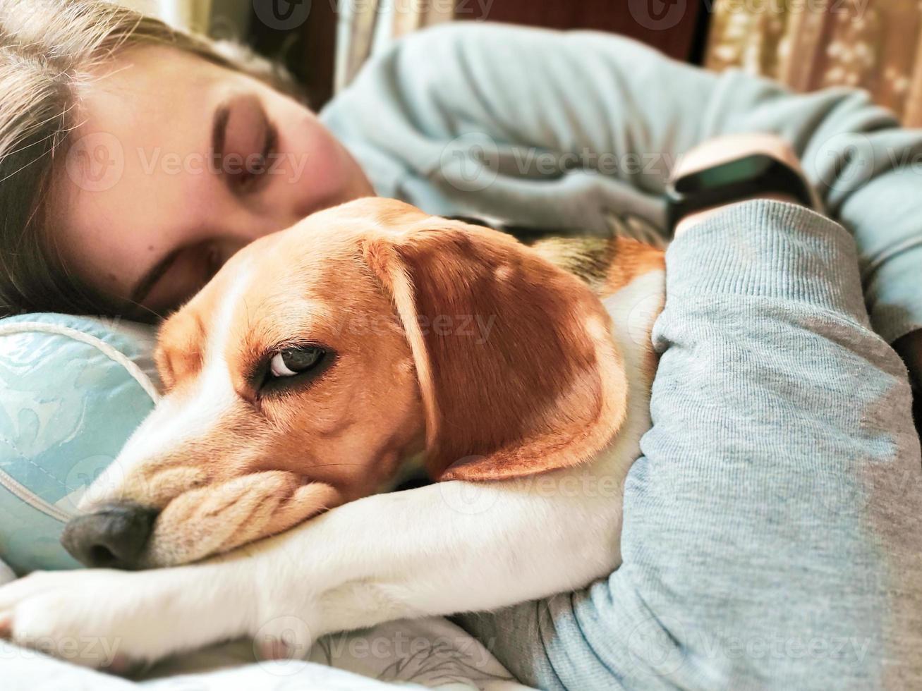 Mädchen und Beagle-Hund schlafen zusammen. Mädchen umarmt einen Hund. Heimtier. Liebe. foto