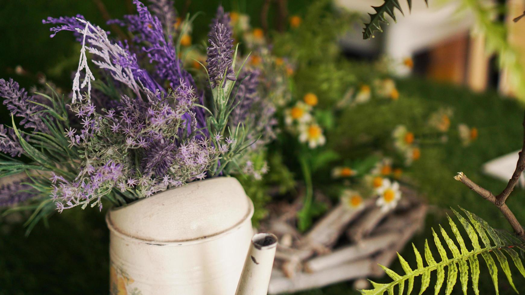 Lavendel in einer alten Teekanne. grünes Gras und Kamille foto