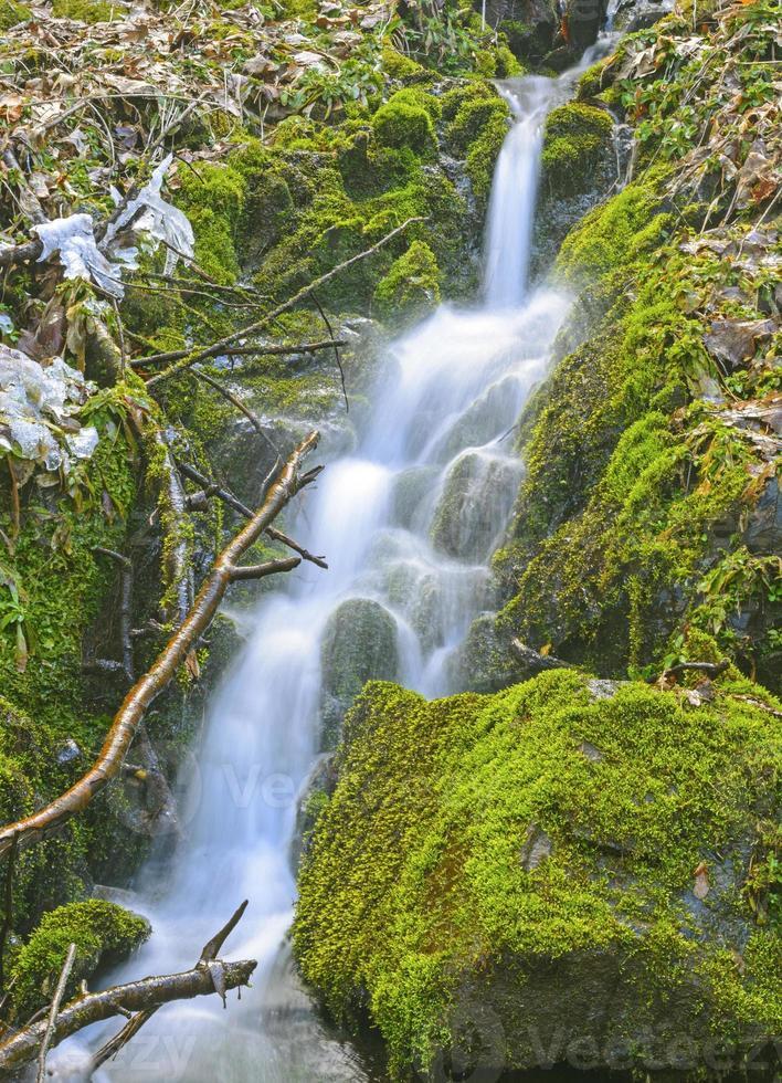 tanzende Wasser in der Wildnis foto