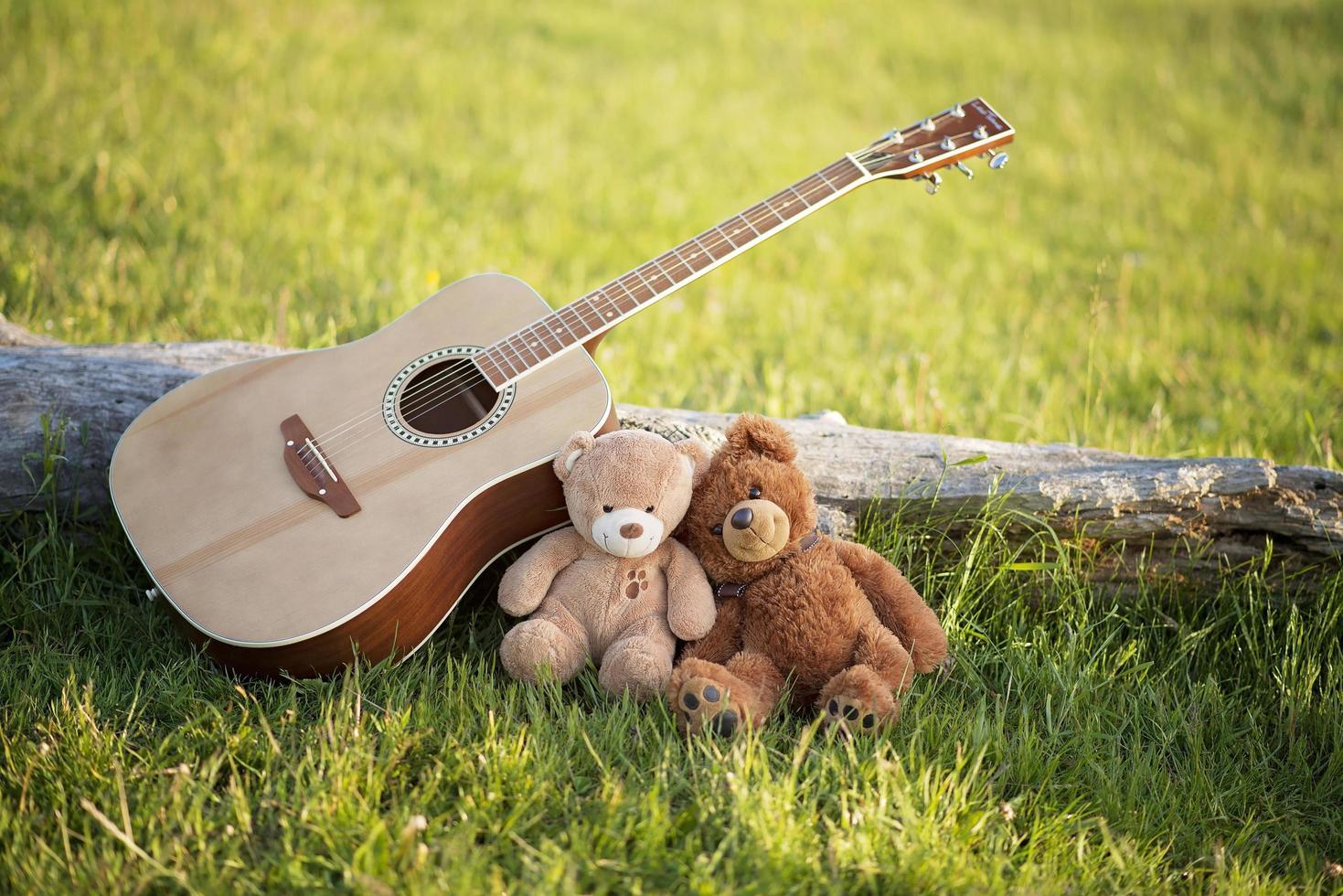 Zwei verliebte Teddybären im Gras mit einer Gitarre an einem sonnigen Sommertag. Valentinstag. Konzept der Liebe und Treue. schwule Paare foto