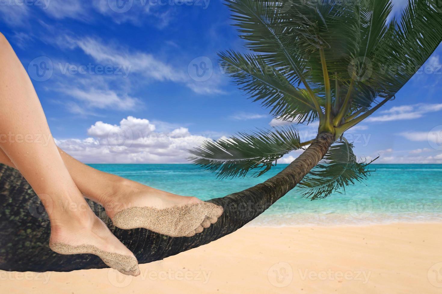 Mädchen baumelt mit den Füßen an einer Palme foto
