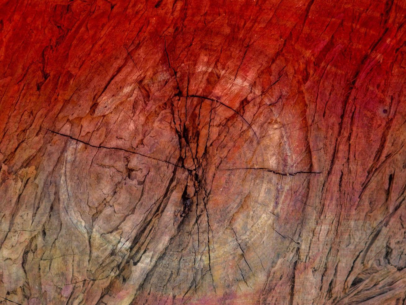 bunte Holzstruktur foto