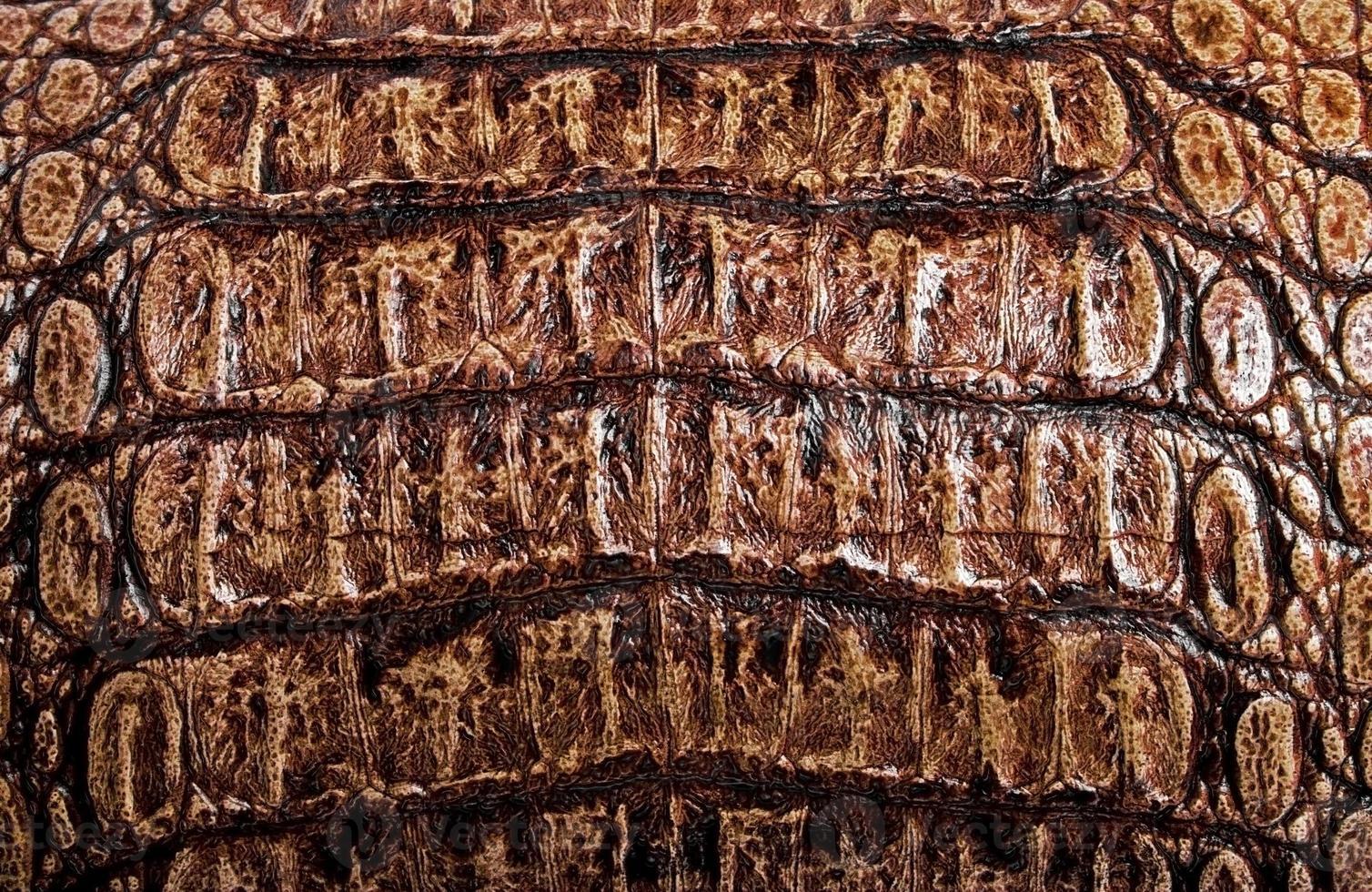 brauner Alligator gemusterter Hintergrund foto