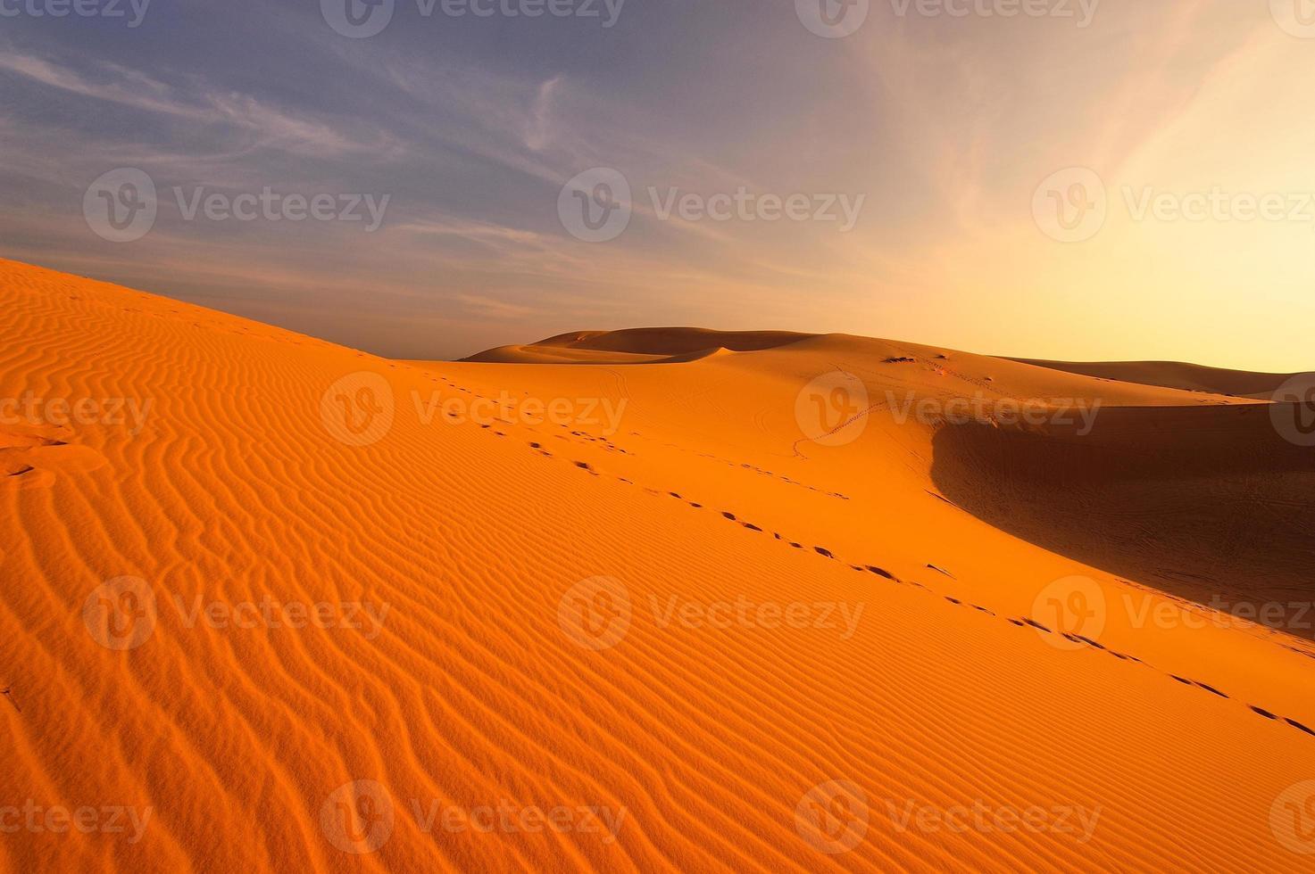 Wüsten- und Sanddünenlandschaft foto