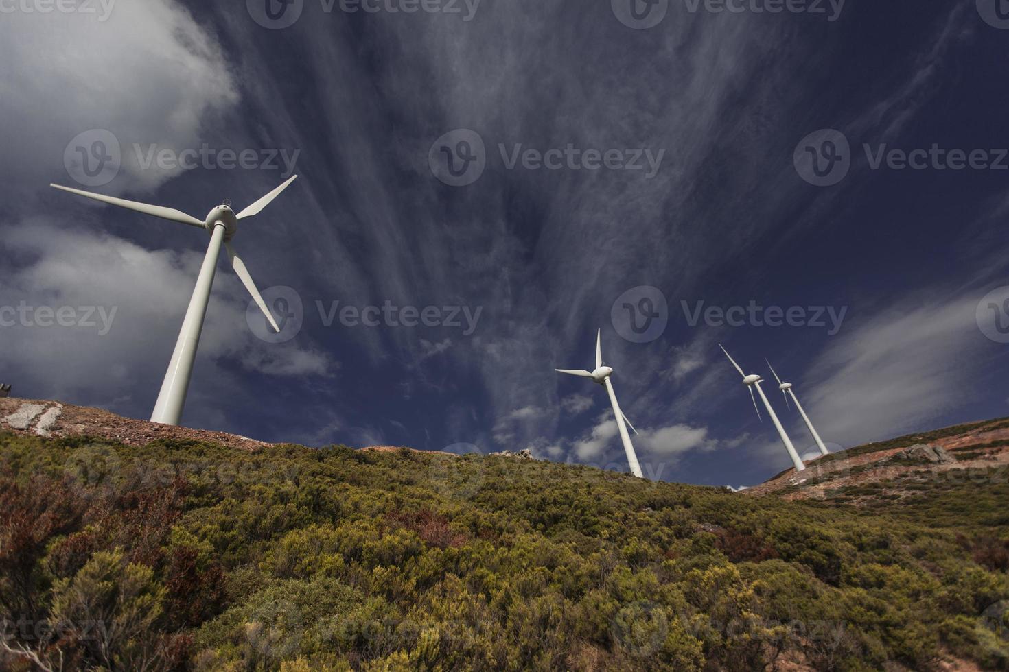 Reihe von Windkraftanlagen zwischen grünen Büschen foto