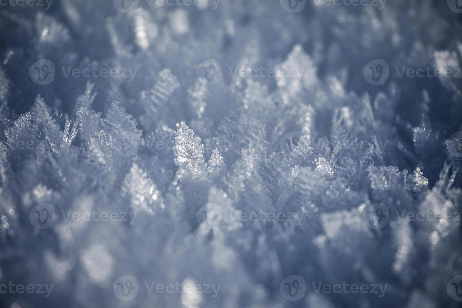 Wintermuster # 1 foto