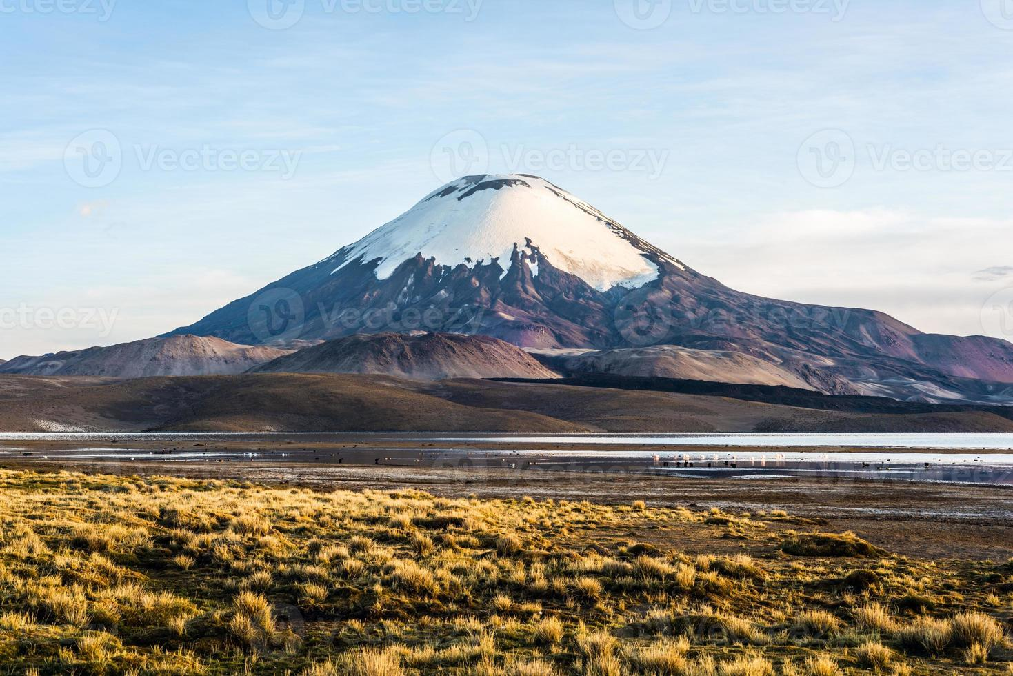 Parinacota Vulkan, See Chungara, Chile foto
