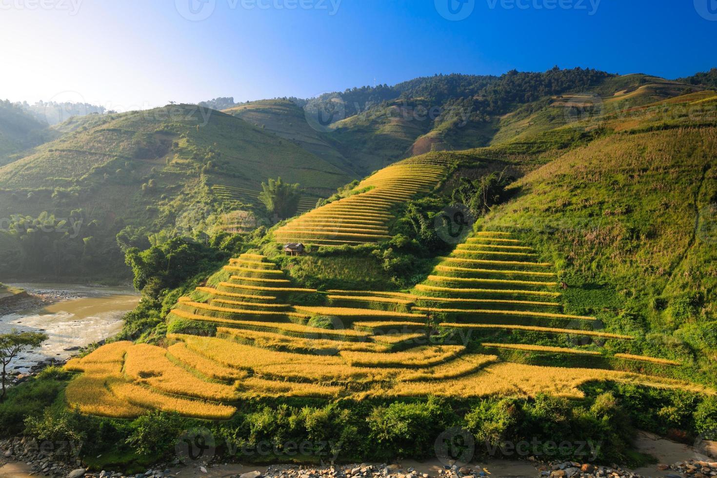 terrassiertes Reisfeld im Norden von Vietnam foto