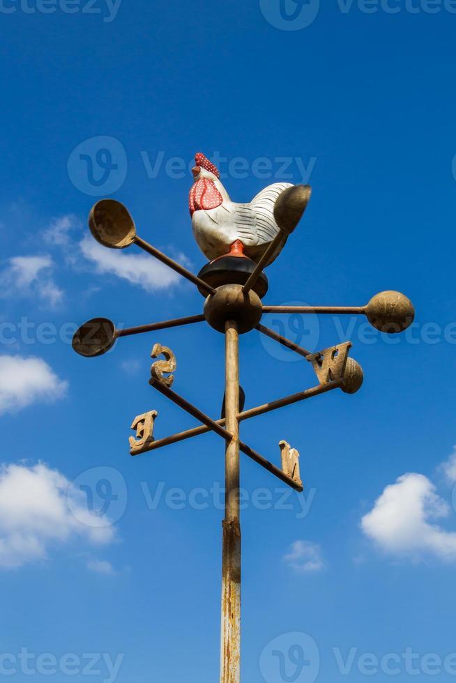 Hühnerkompass. foto