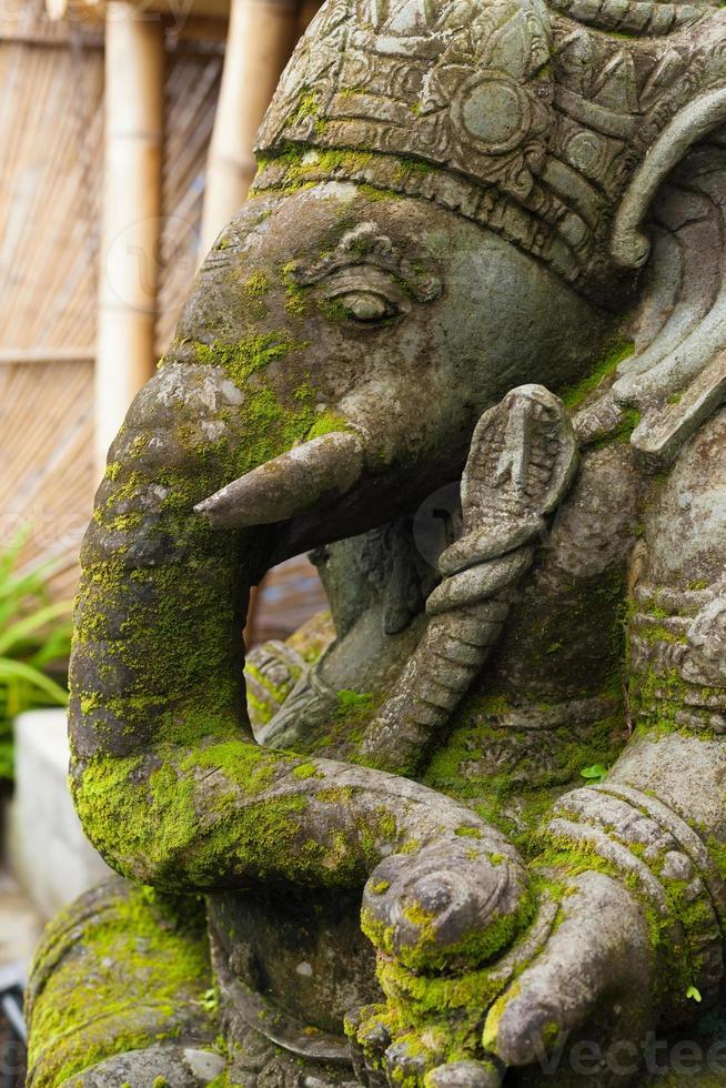 Ganesh foto