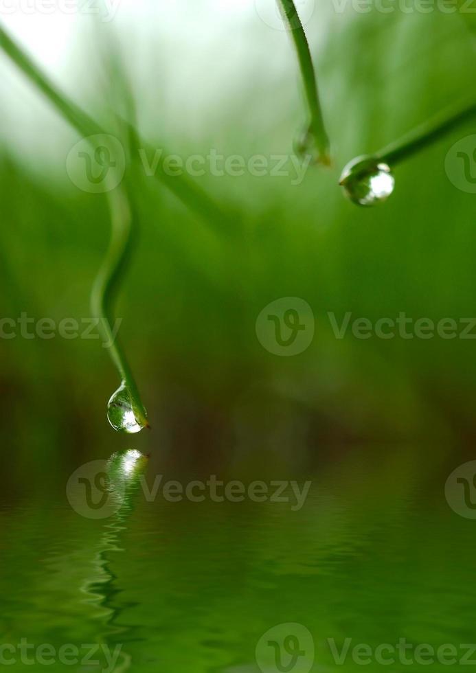 Wassertropfen mit Reflexion auf Wasser foto