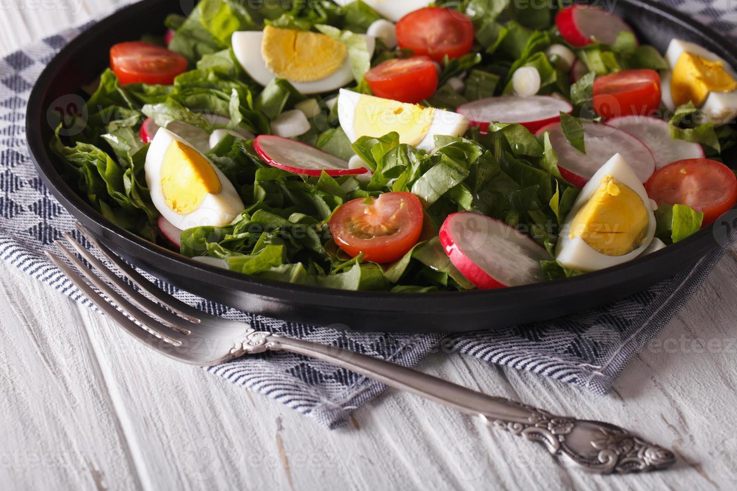 frischer Frühlingssalat mit Eiern, Tomaten, Radieschen und Kräutern foto