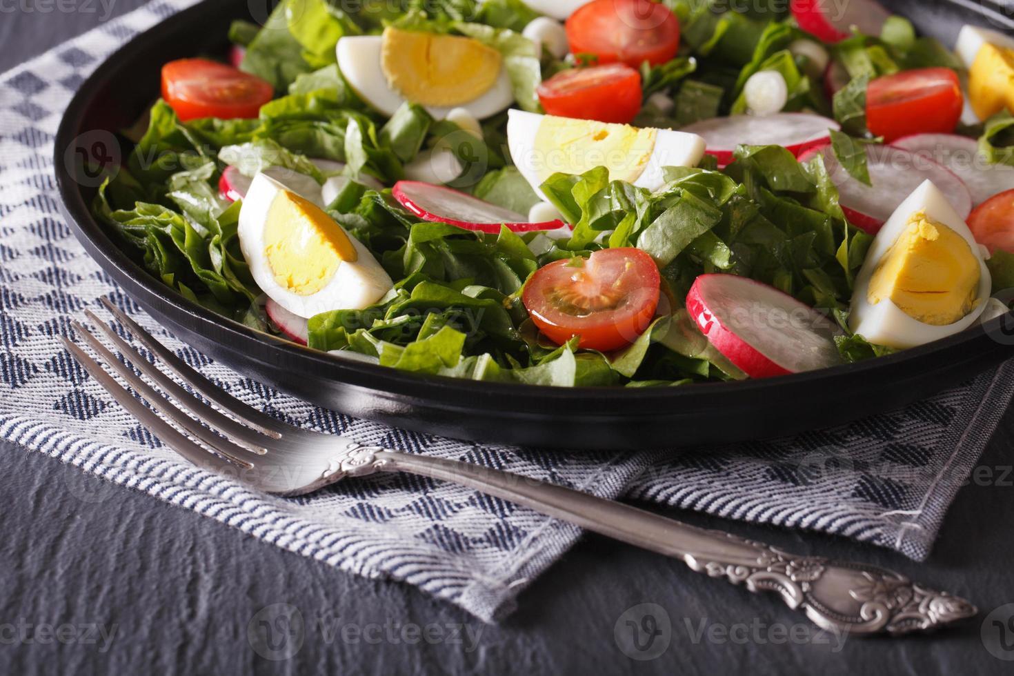 leckerer Salat mit Eiern, Radieschen und Sauerampfer hautnah foto