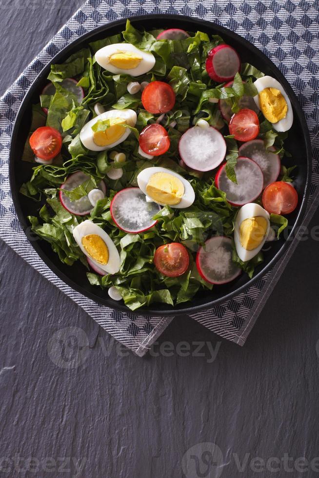 frischer Salat mit Ei, Radieschen und Kräutern vertikale Draufsicht foto