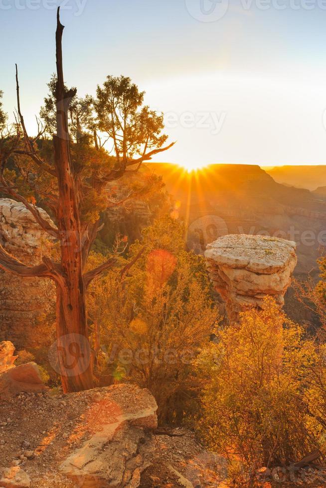 Grand Canyon National Park - Sonnenuntergang foto