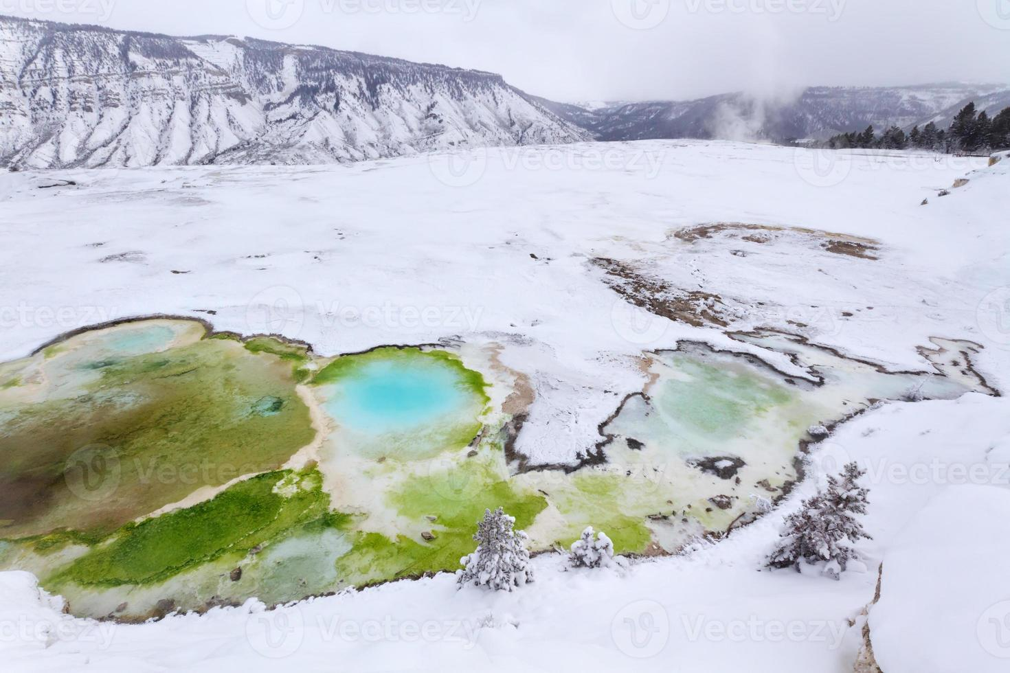 Yellowstone im Winter foto