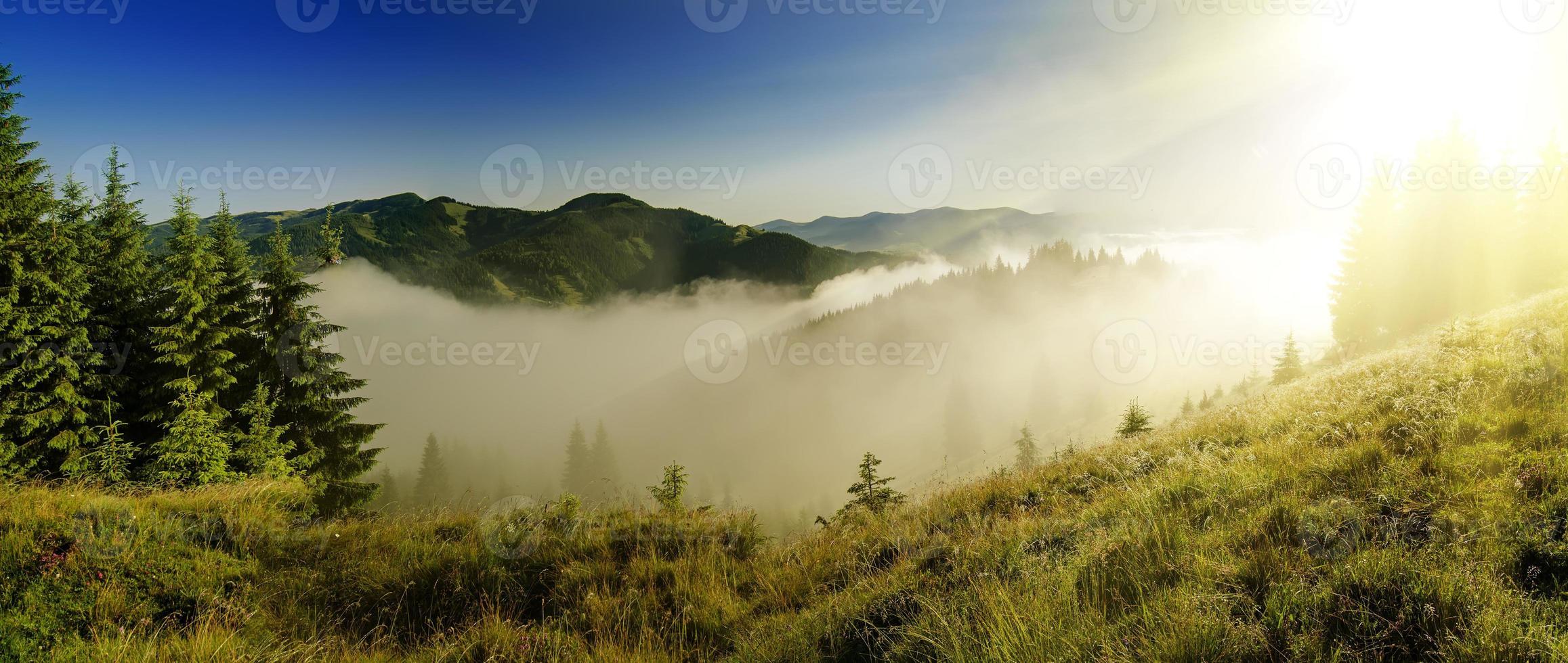 neblige Morgenlandschaft foto