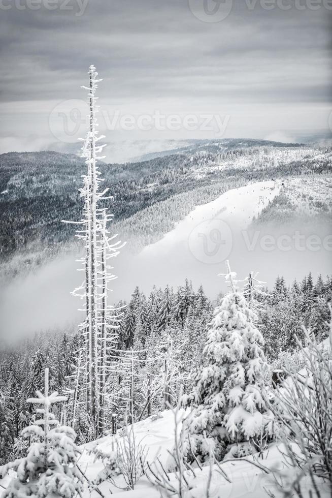 Winterwanderung foto