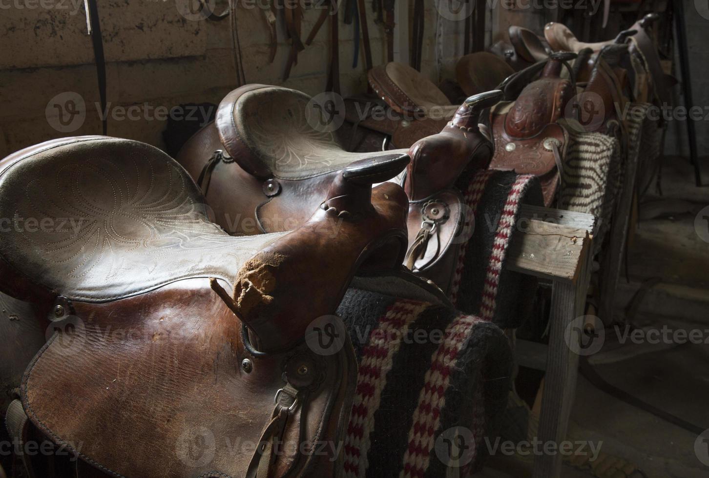 Reihe von Pferdesätteln foto