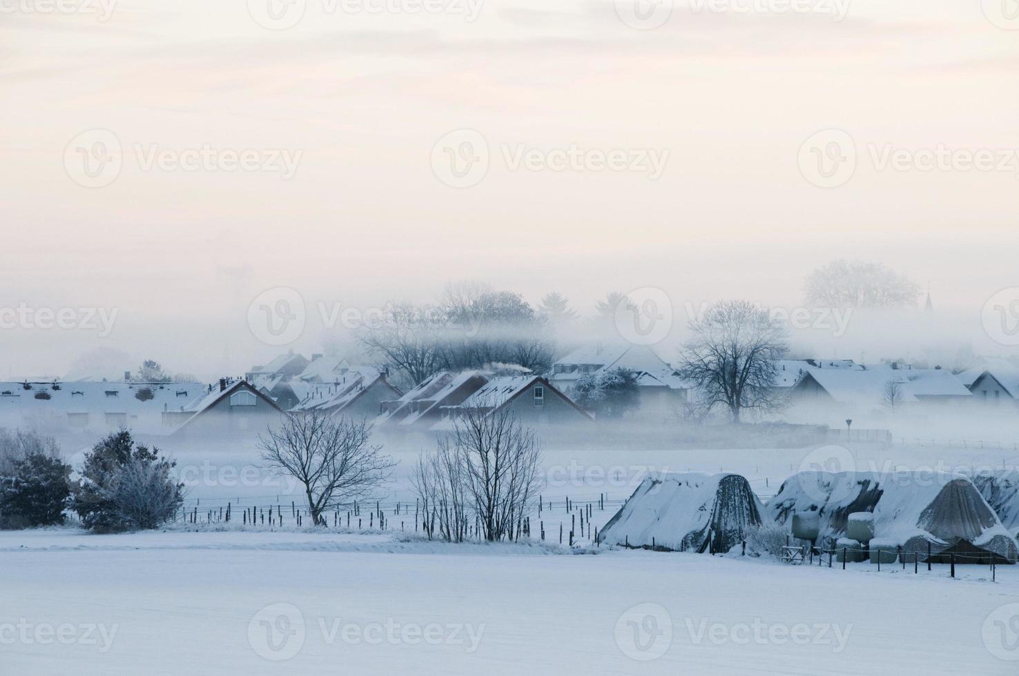 Winter foto