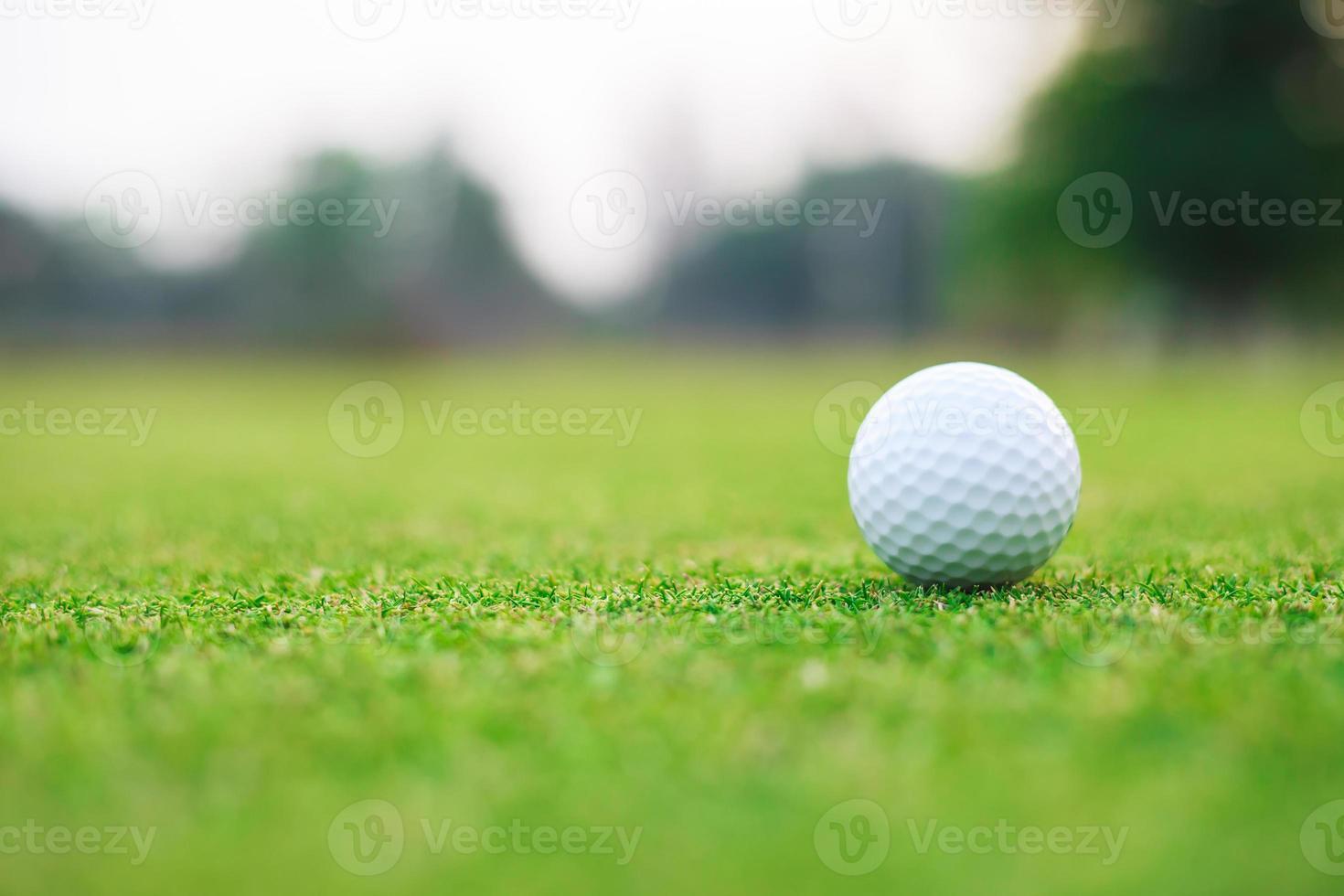 Golfball auf dem Grün foto