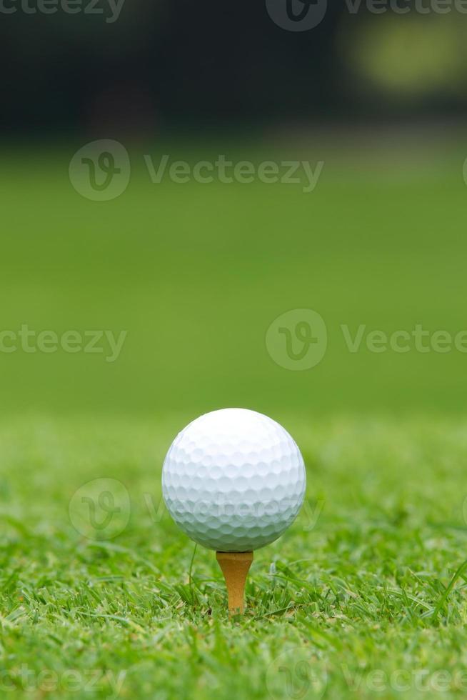 Ein weißer Golfball saß auf einem Abschlag foto